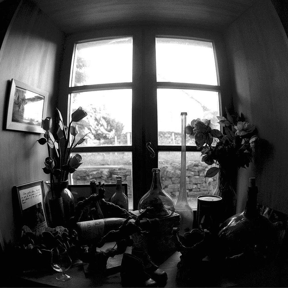 090 (Черно-белый)