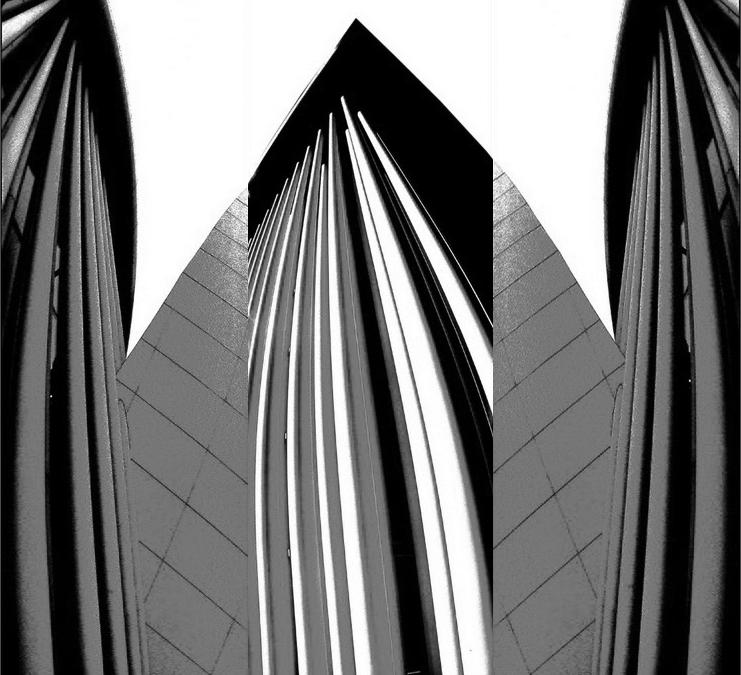 250 (Черно-белый)